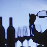 experimentando-vinhos